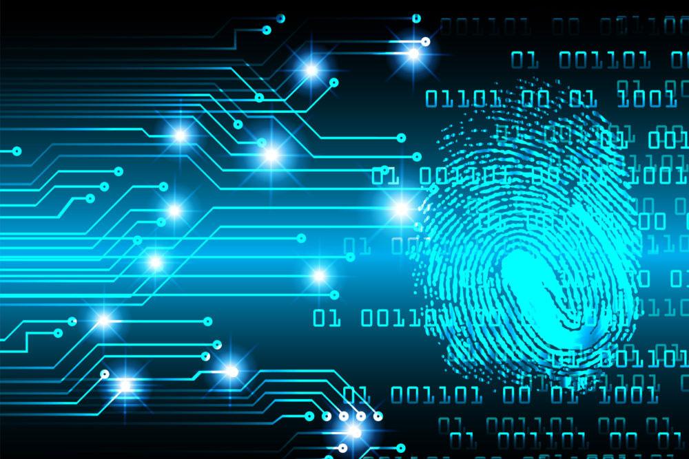 data hacks - fingerprint image and data codes
